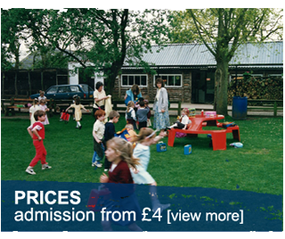 admission and prices at the Welsh Hawking Centre