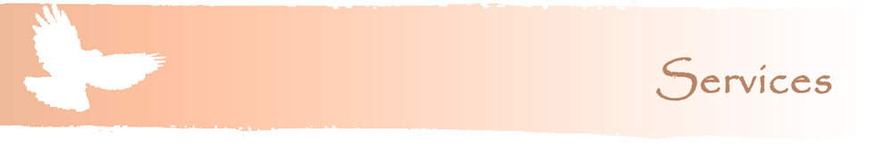 Welsh Hawking Centre Services Banner